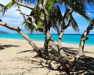 mayotte-vacances-plage-jardin-maore